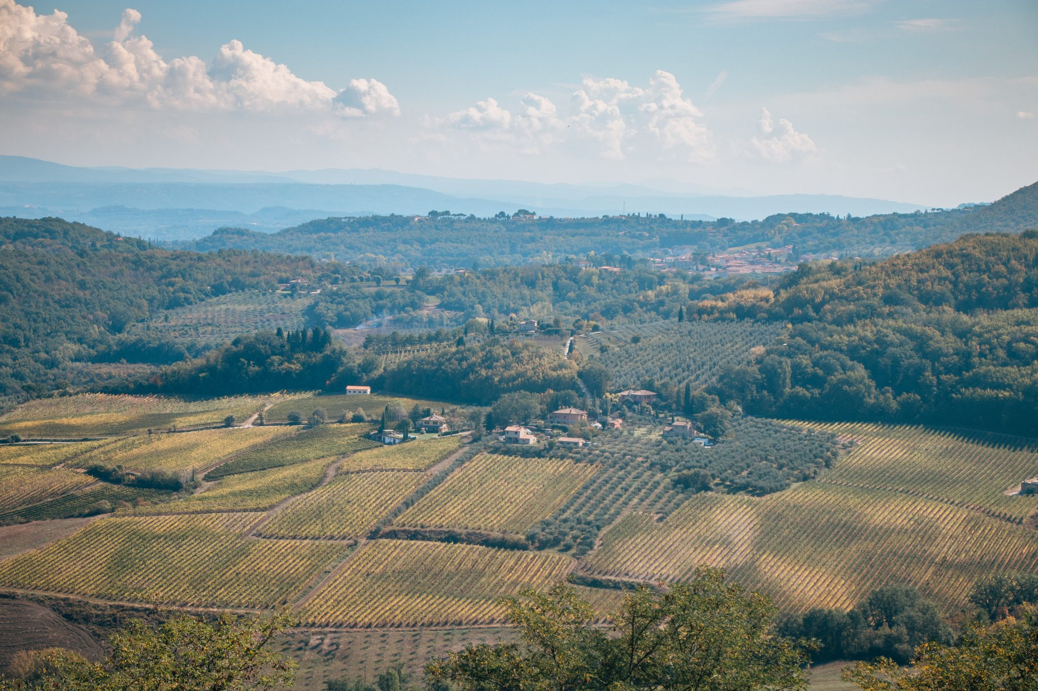 best places to eat in Val d'Orcia, Tuscany
