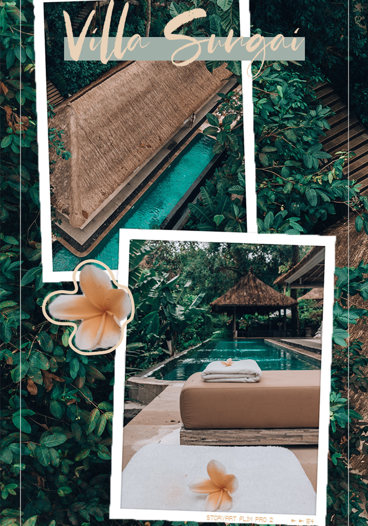 Bali Luxury Villa Review